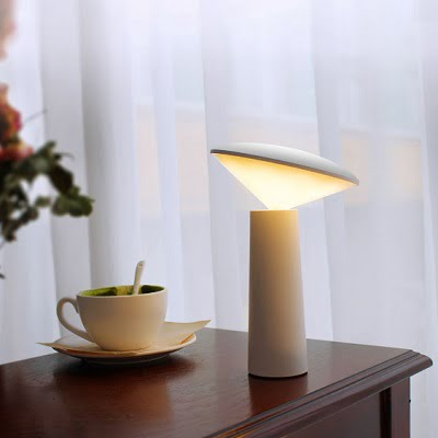 Cordless Eyestrain Reducing Reading Lamp